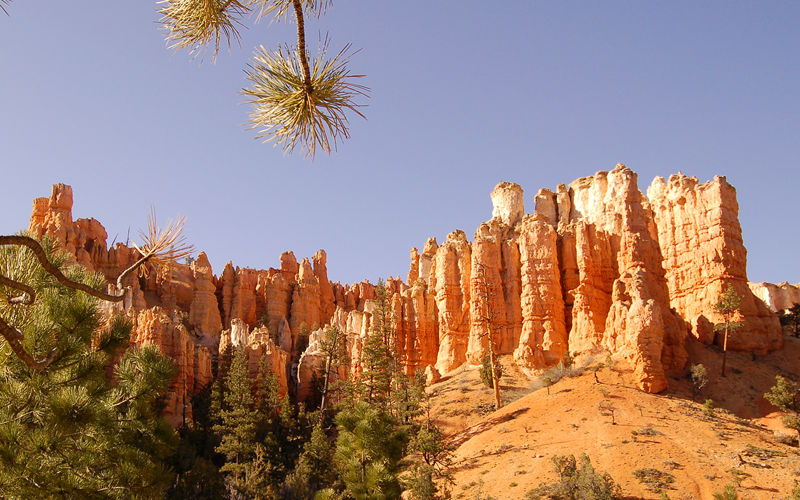 Image result for bryce  canyon 800x500